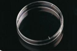 Deltalab - Petri Kabı 90x14 mm Steril A